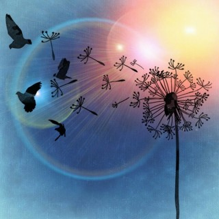 centre-nature-divine-3814