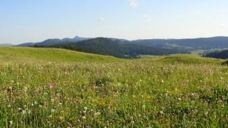 Le Parc Naturel Régional du Haut Jura