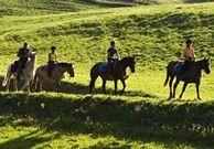 randonnée à cheval haut-jura m.templereau