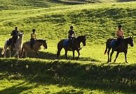 Horse ride organisers