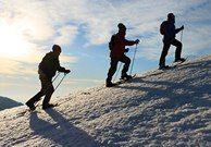 Snowshoe excursion guides
