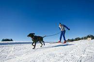 ski joering - stephane godin