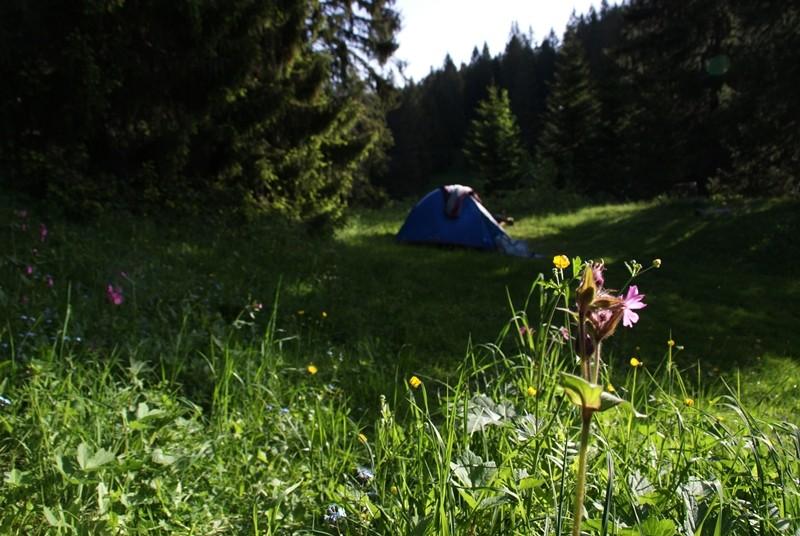 Campsites in Saint Claude & around
