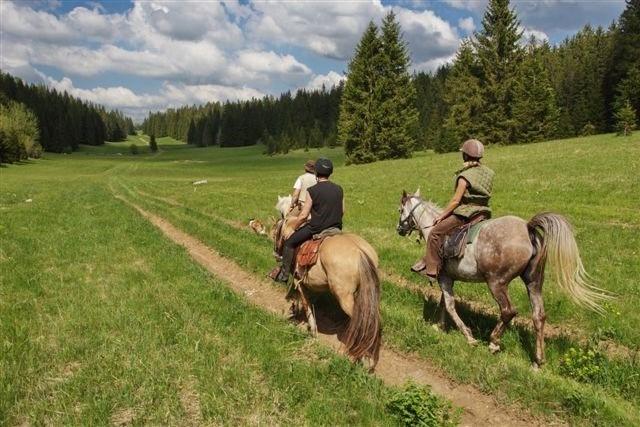 Sorties à cheval