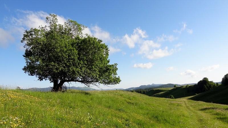 Grande Traversée du Jura en été
