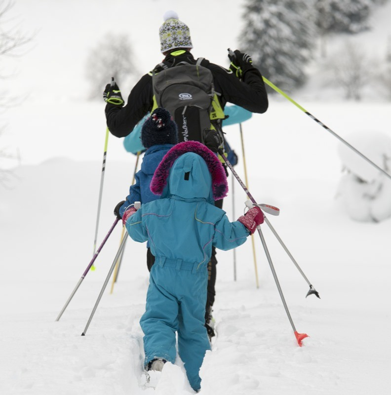 Snowshoe excursion guides
