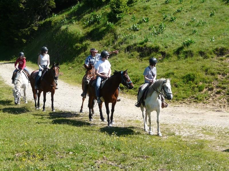 Ausritte zu Pferd