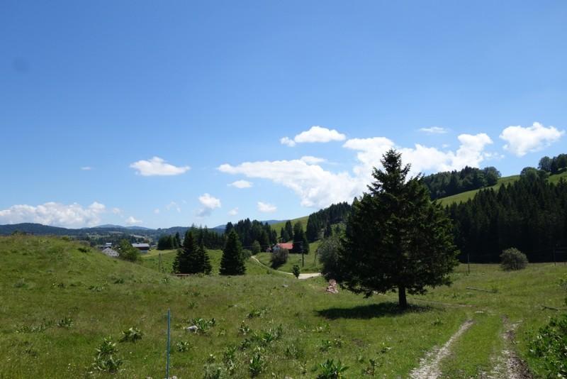 Sentier des Lapidaires du Jura