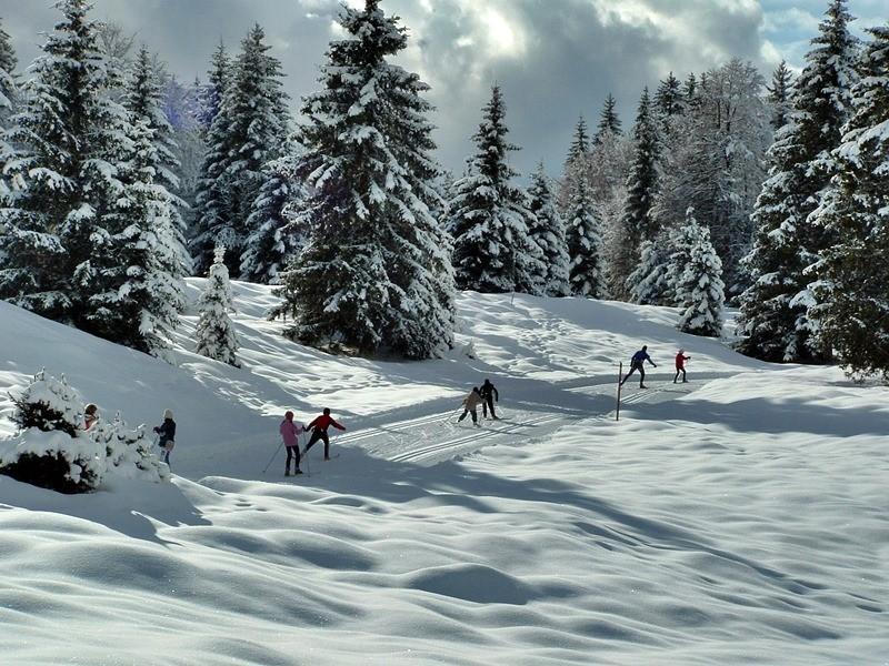 Veranstalter von Skiwanderungen