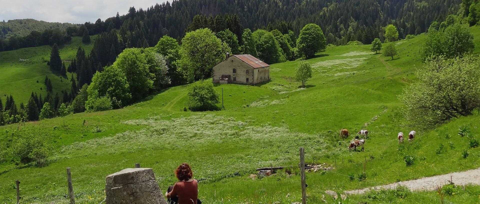 bienvenue-sur-le-site-de-haut-jura-saint-claude-303