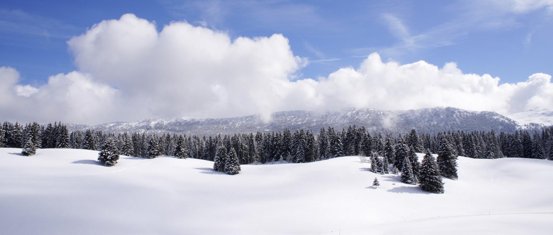 Hautes Combes Jura