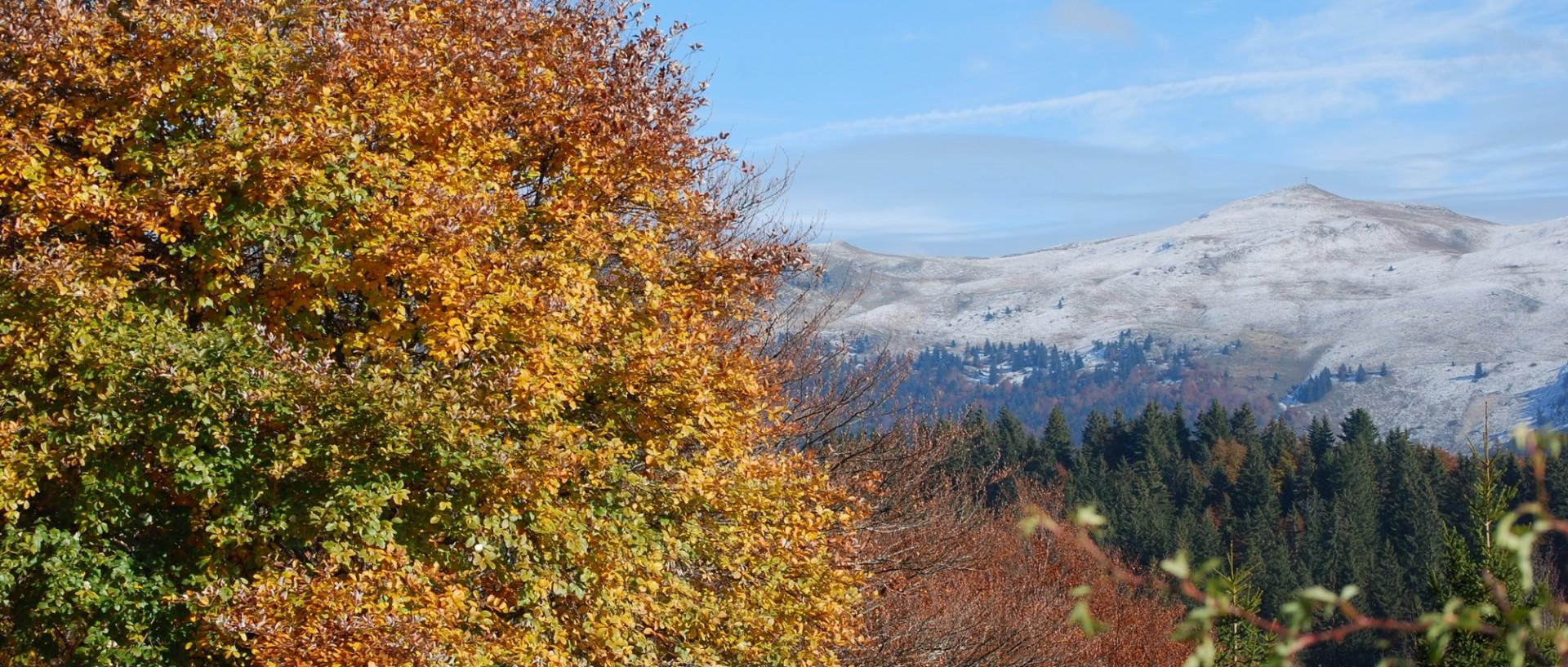 haut-jura-automne