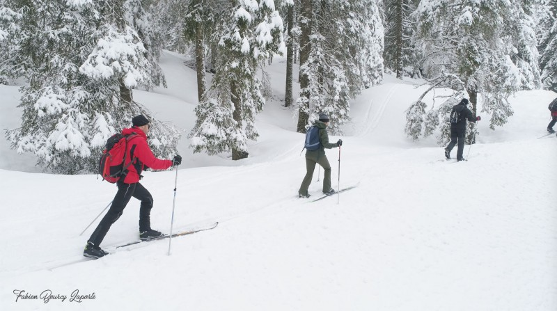 Ski-fond-Haut-Jura