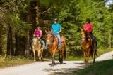 GP_Gaia Loisirs Equestres_W5