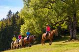 GP_Gaia Loisirs Equestres_W6