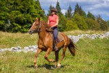 GP_Gaia Loisirs Equestres_W7