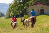 GP_Gaia Loisirs Equestres_W8