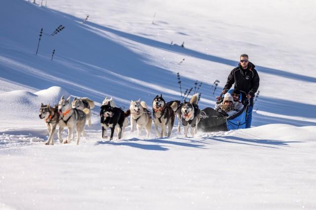 GODIN-chalet des siberiens-musher_04
