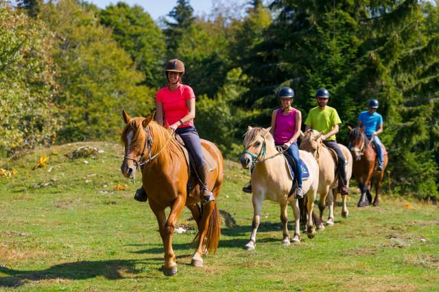 GP_Gaia Loisirs Equestres_W4
