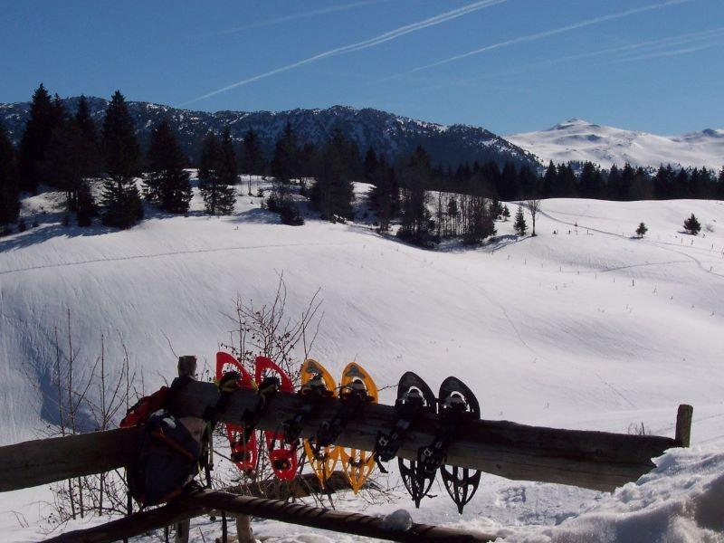 paysage hiver 007 bis