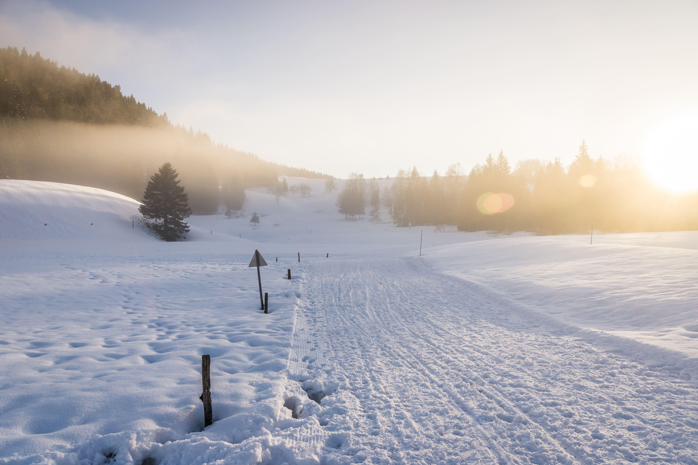 Piste ski Hautes Combes - © Sophie Balaska