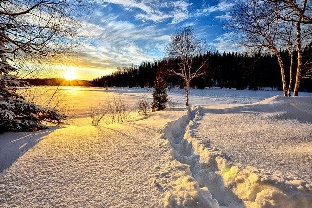 winter-landscape-636634_640